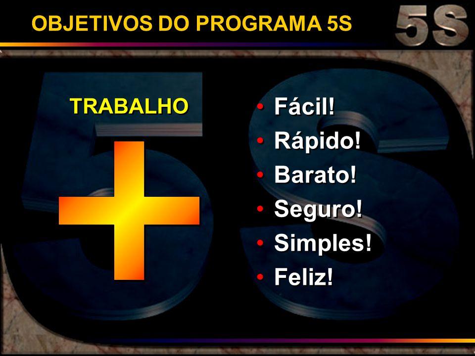 OBJETIVOS DO PROGRAMA 5S