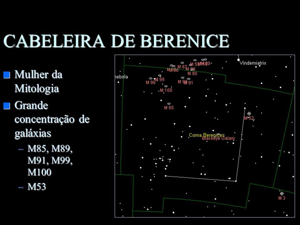 CABELEIRA DE BERENICE Mulher da Mitologia