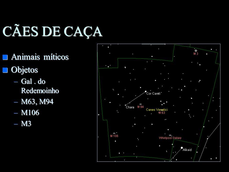 CÃES DE CAÇA Animais míticos Objetos Gal . do Redemoinho M63, M94 M106