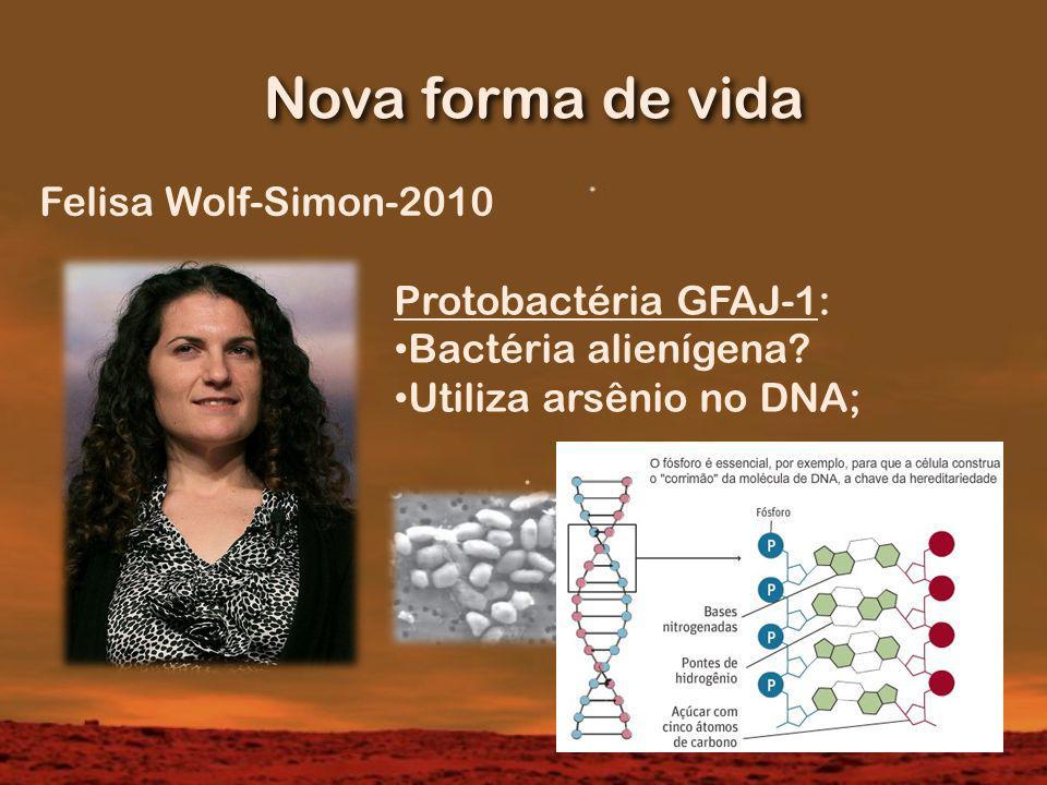 Nova forma de vida Felisa Wolf-Simon-2010 Protobactéria GFAJ-1: