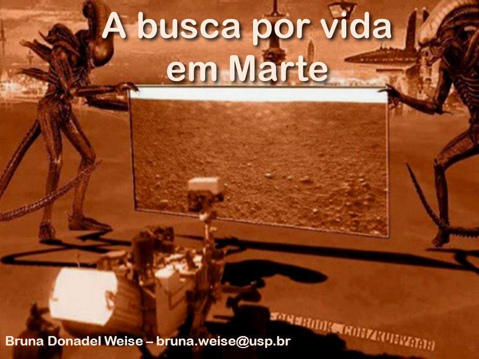 A busca por vida em Marte