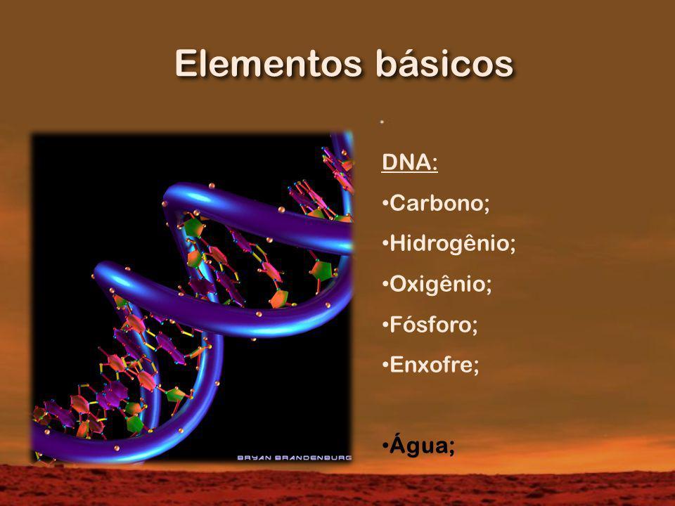 Elementos básicos DNA: Carbono; Hidrogênio; Oxigênio; Fósforo;