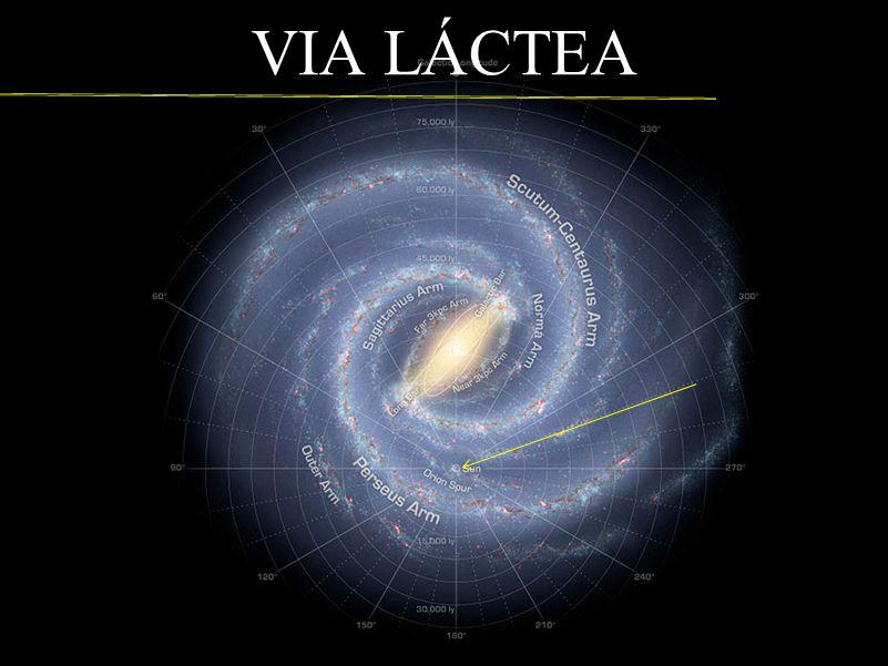 VIA LÁCTEA Nosso Sistema Solar está Situado no plano galáctico e tem a órbita circular.