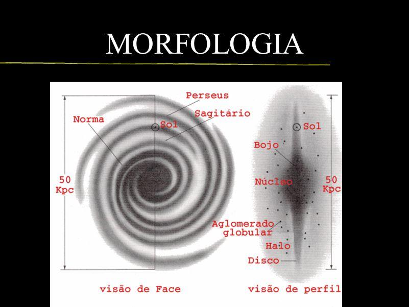 MORFOLOGIA Bojo: é a parte central em formato elíptico. Tem um raio que varia de 1000 a 2000 parsecs. Aqui vivem as estrelas de população II.