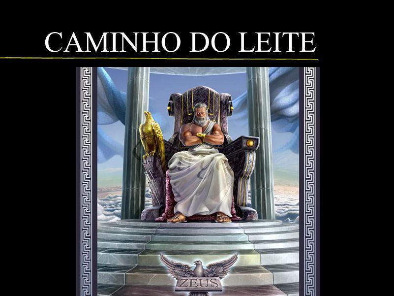 CAMINHO DO LEITE
