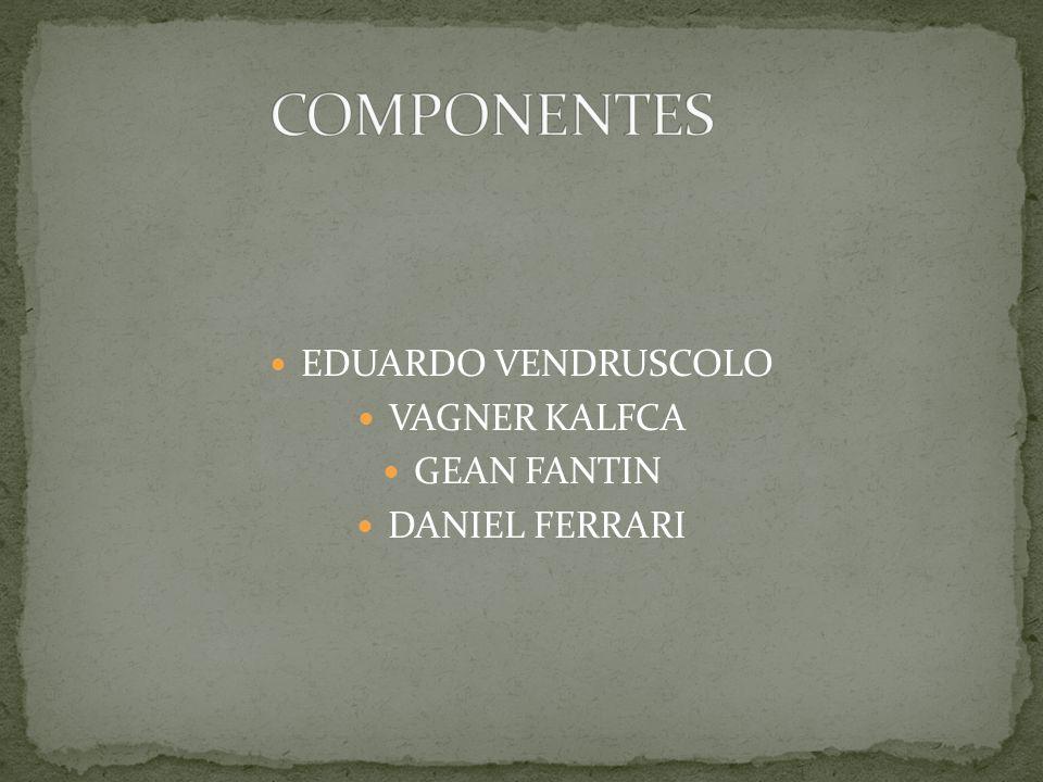 COMPONENTES EDUARDO VENDRUSCOLO VAGNER KALFCA GEAN FANTIN