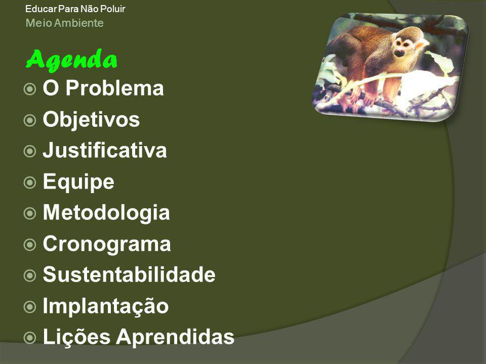 Agenda O Problema Objetivos Justificativa Equipe Metodologia