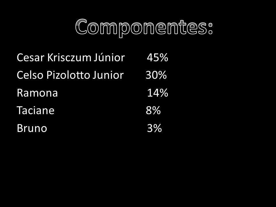 Componentes: Cesar Krisczum Júnior 45% Celso Pizolotto Junior 30% Ramona 14% Taciane 8% Bruno 3%