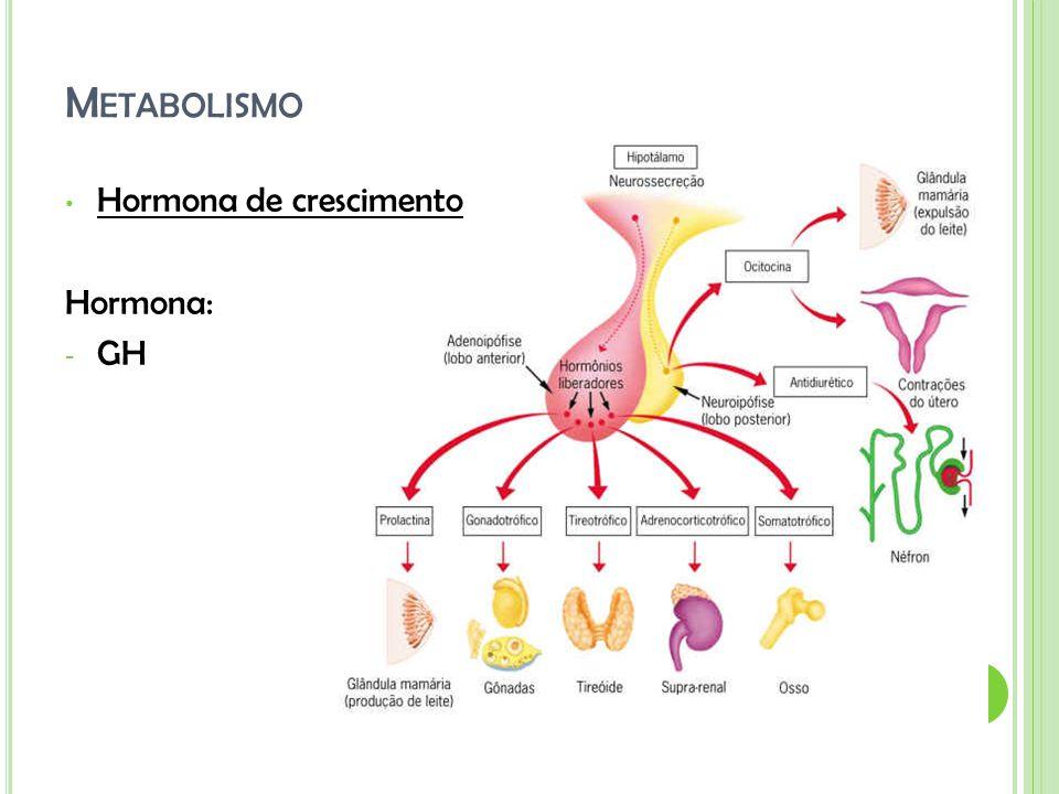 Metabolismo Hormona de crescimento Hormona: GH