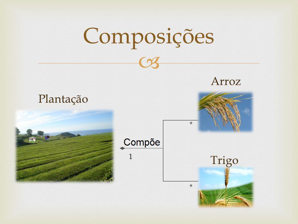 Composições Arroz Plantação * 1 Trigo *