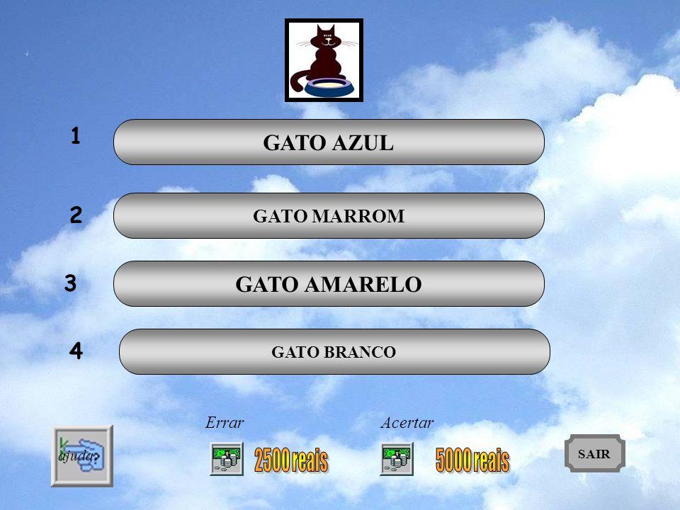 1 GATO AZUL 2 GATO AMARELO 3 4 GATO MARROM 2500 reais 5000 reais
