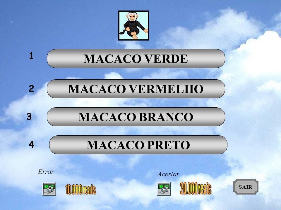 MACACO VERDE MACACO VERMELHO MACACO BRANCO MACACO PRETO