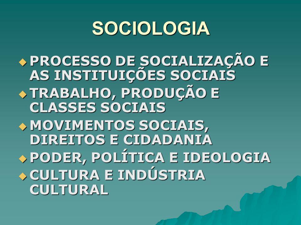 SOCIOLOGIA PROCESSO DE SOCIALIZAÇÃO E AS INSTITUIÇÕES SOCIAIS
