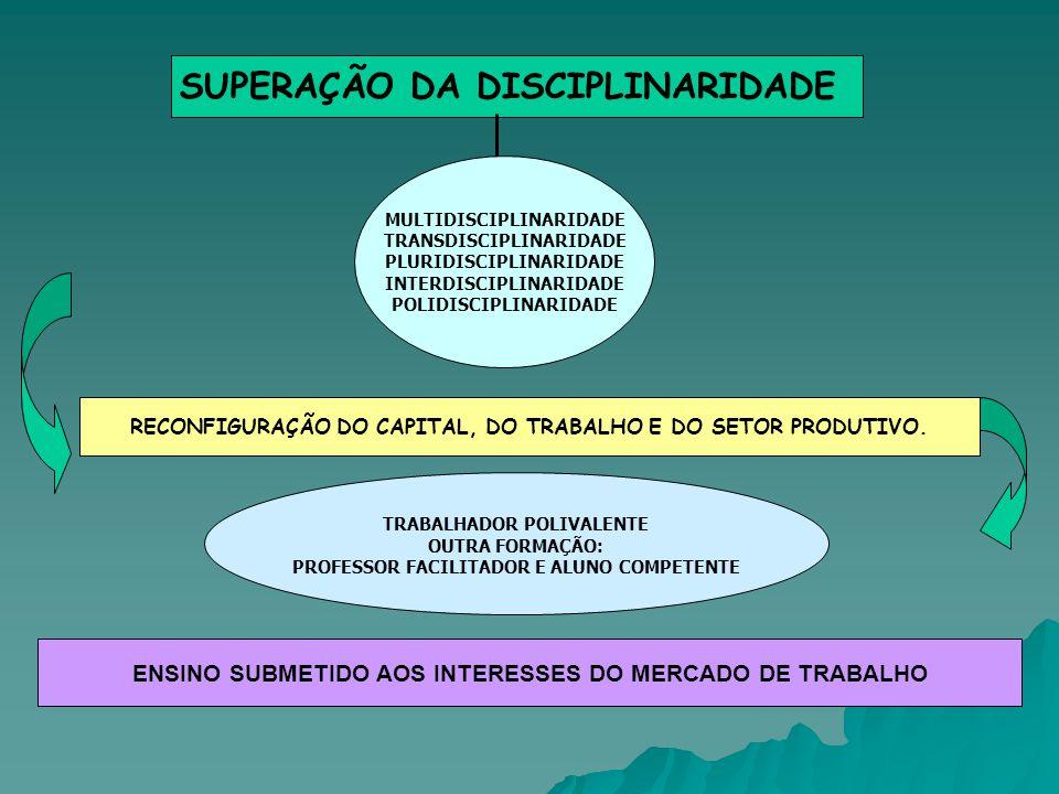 SUPERAÇÃO DA DISCIPLINARIDADE