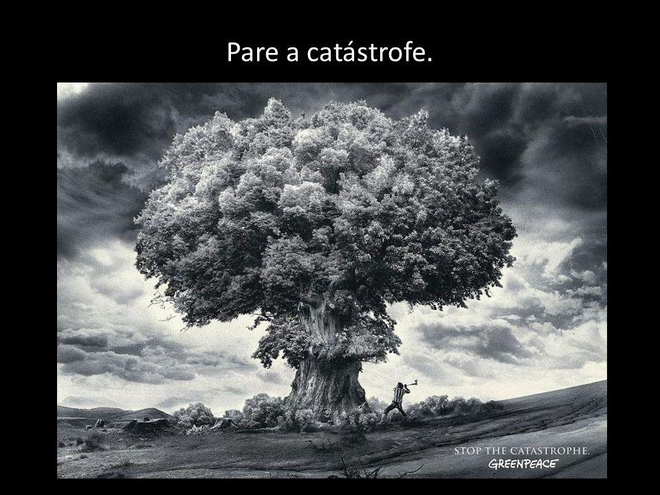 Pare a catástrofe.
