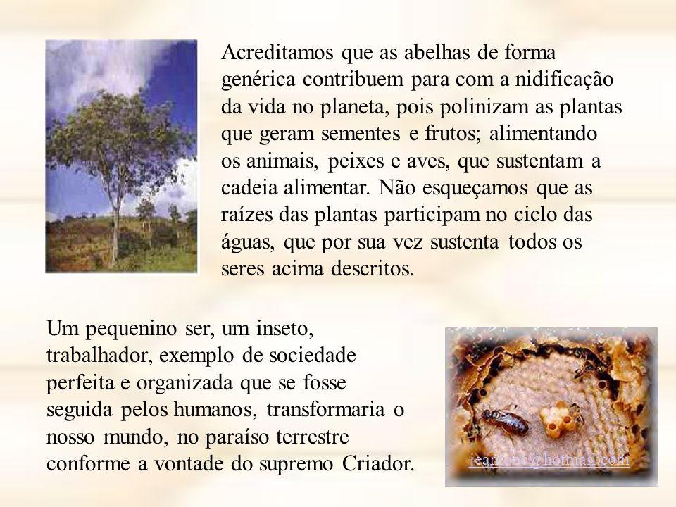 Acreditamos que as abelhas de forma genérica contribuem para com a nidificação da vida no planeta, pois polinizam as plantas que geram sementes e frutos; alimentando os animais, peixes e aves, que sustentam a cadeia alimentar. Não esqueçamos que as raízes das plantas participam no ciclo das águas, que por sua vez sustenta todos os seres acima descritos.