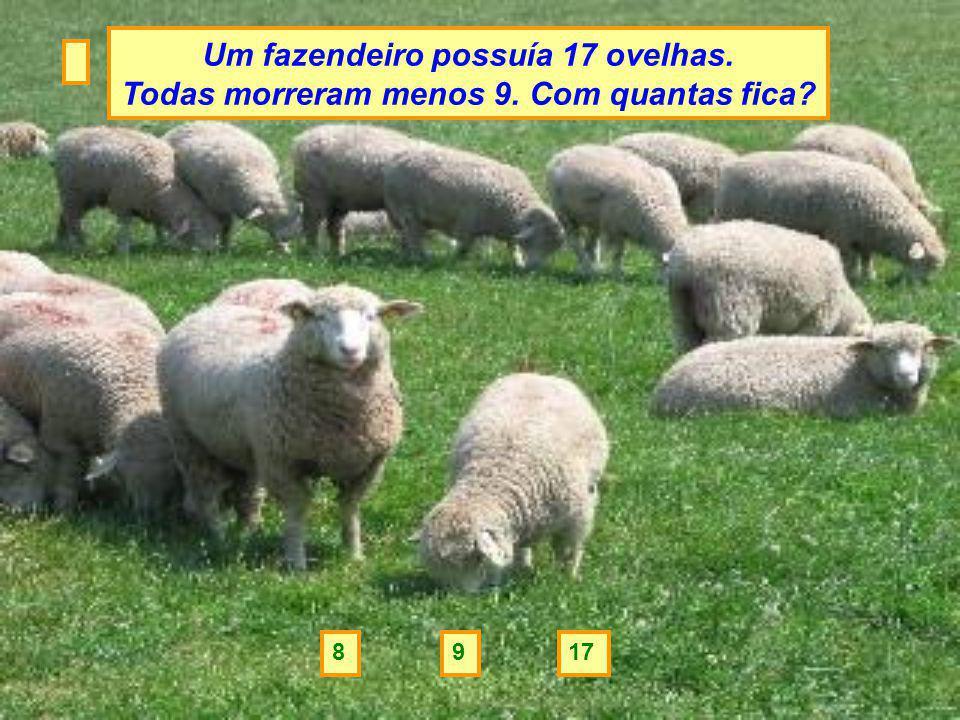 Um fazendeiro possuía 17 ovelhas.