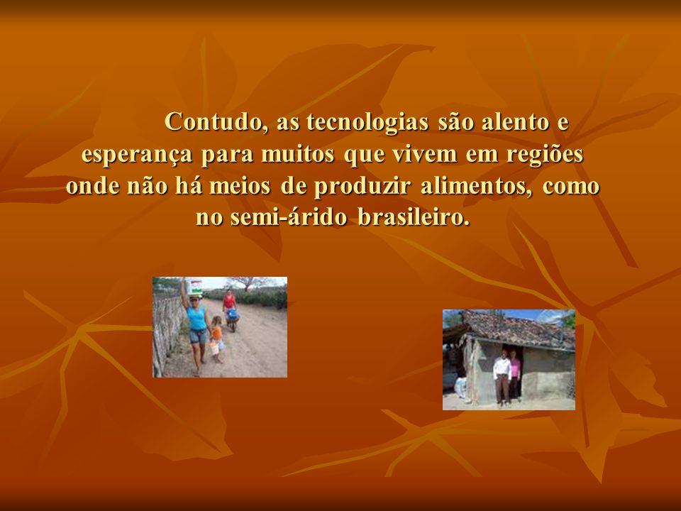 Contudo, as tecnologias são alento e esperança para muitos que vivem em regiões onde não há meios de produzir alimentos, como no semi-árido brasileiro.