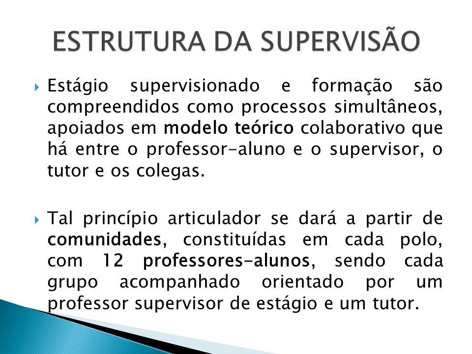 ESTRUTURA DA SUPERVISÃO