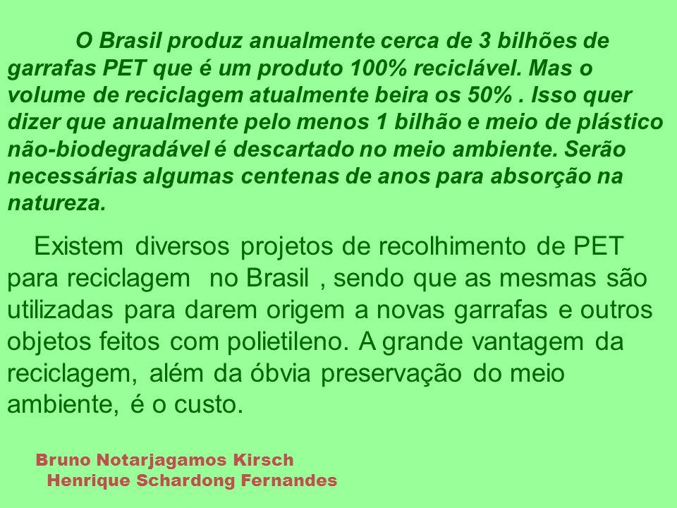 O Brasil produz anualmente cerca de 3 bilhões de garrafas PET que é um produto 100% reciclável. Mas o volume de reciclagem atualmente beira os 50% . Isso quer dizer que anualmente pelo menos 1 bilhão e meio de plástico não-biodegradável é descartado no meio ambiente. Serão necessárias algumas centenas de anos para absorção na natureza.