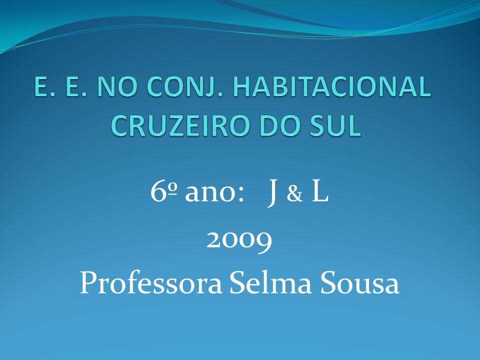 E. E. NO CONJ. HABITACIONAL CRUZEIRO DO SUL