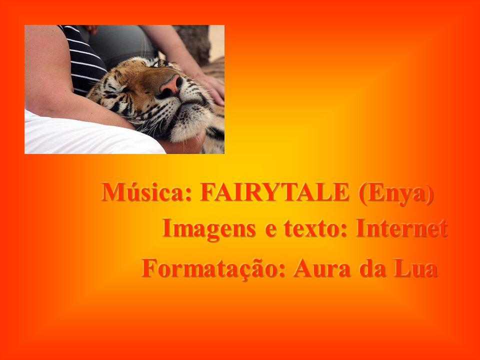Música: FAIRYTALE (Enya)