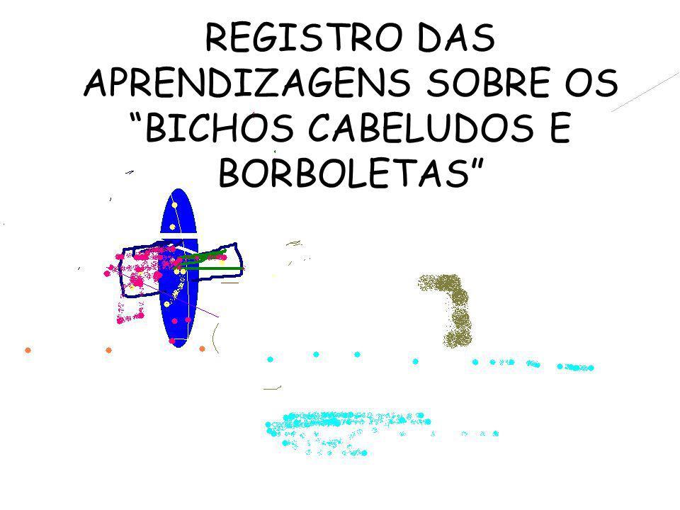 REGISTRO DAS APRENDIZAGENS SOBRE OS BICHOS CABELUDOS E BORBOLETAS