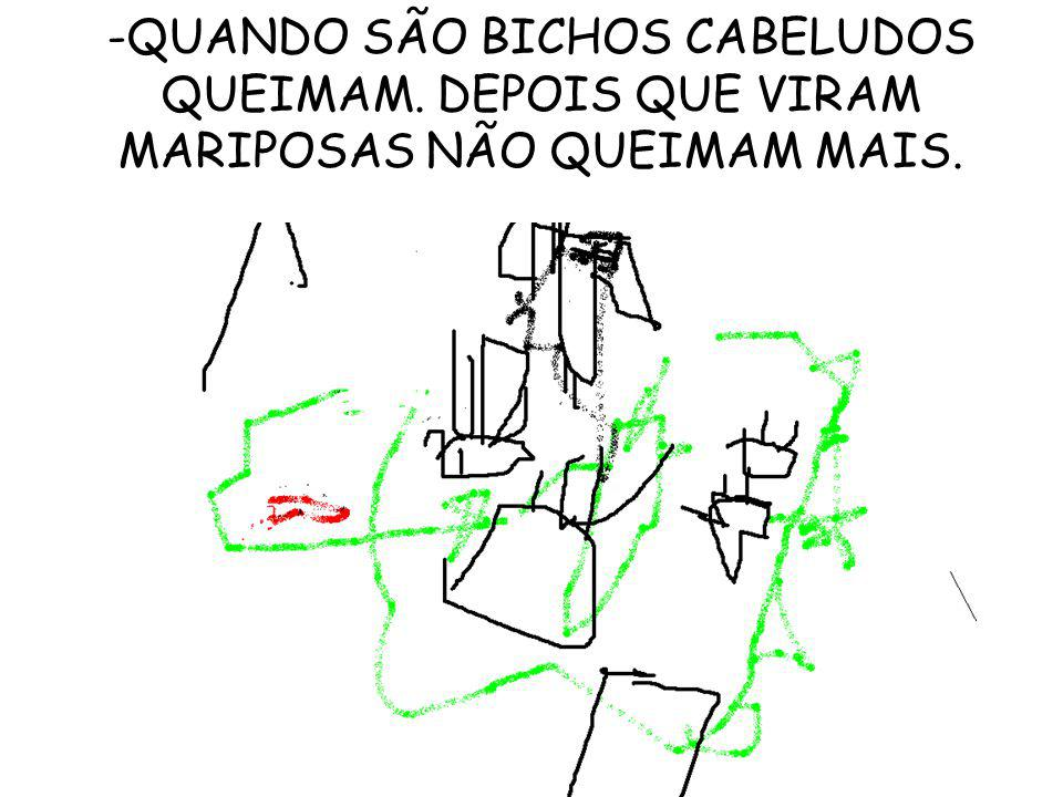 QUANDO SÃO BICHOS CABELUDOS QUEIMAM