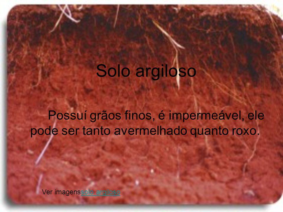 Solo argiloso Possuí grãos finos, é impermeável, ele pode ser tanto avermelhado quanto roxo.