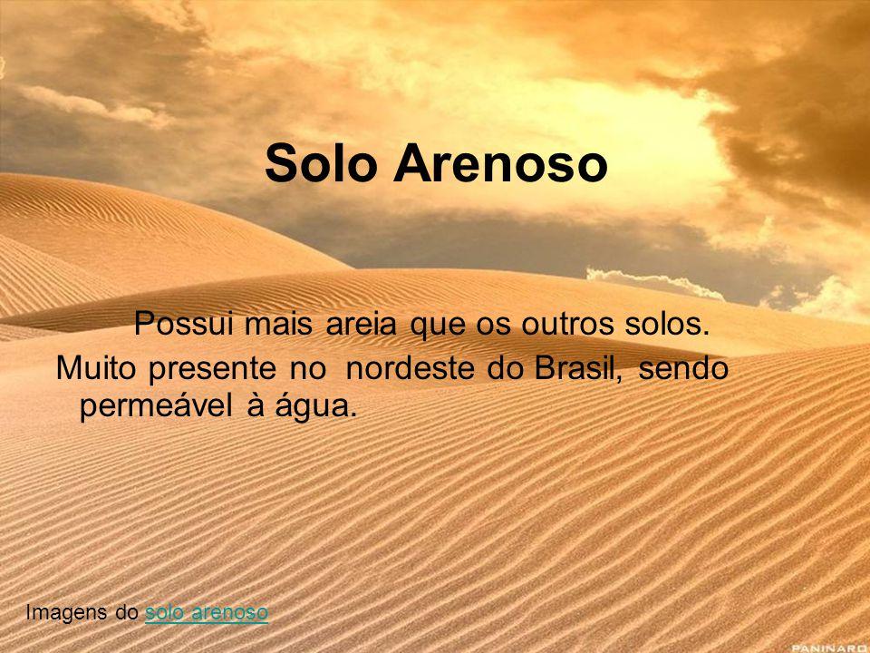 Solo Arenoso Possui mais areia que os outros solos.