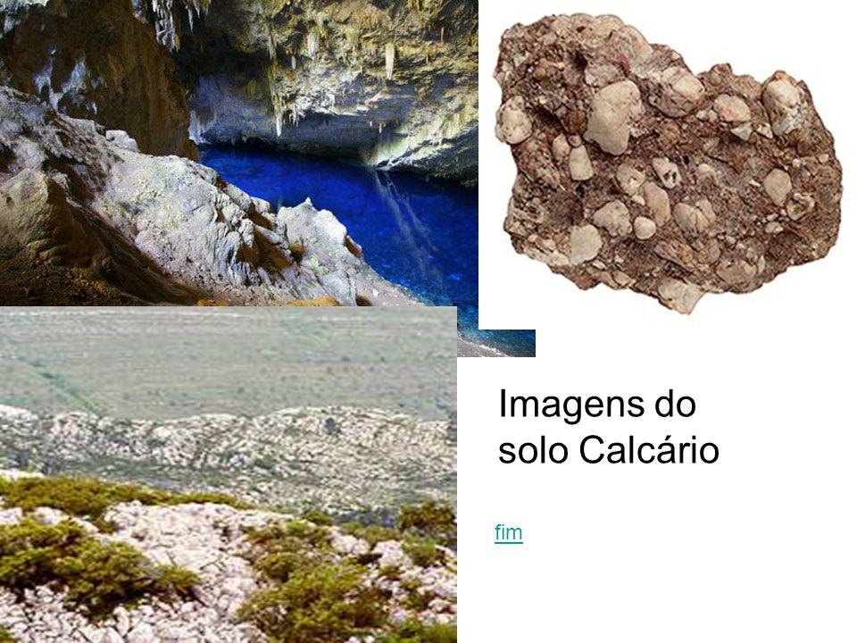 Imagens do solo Calcário