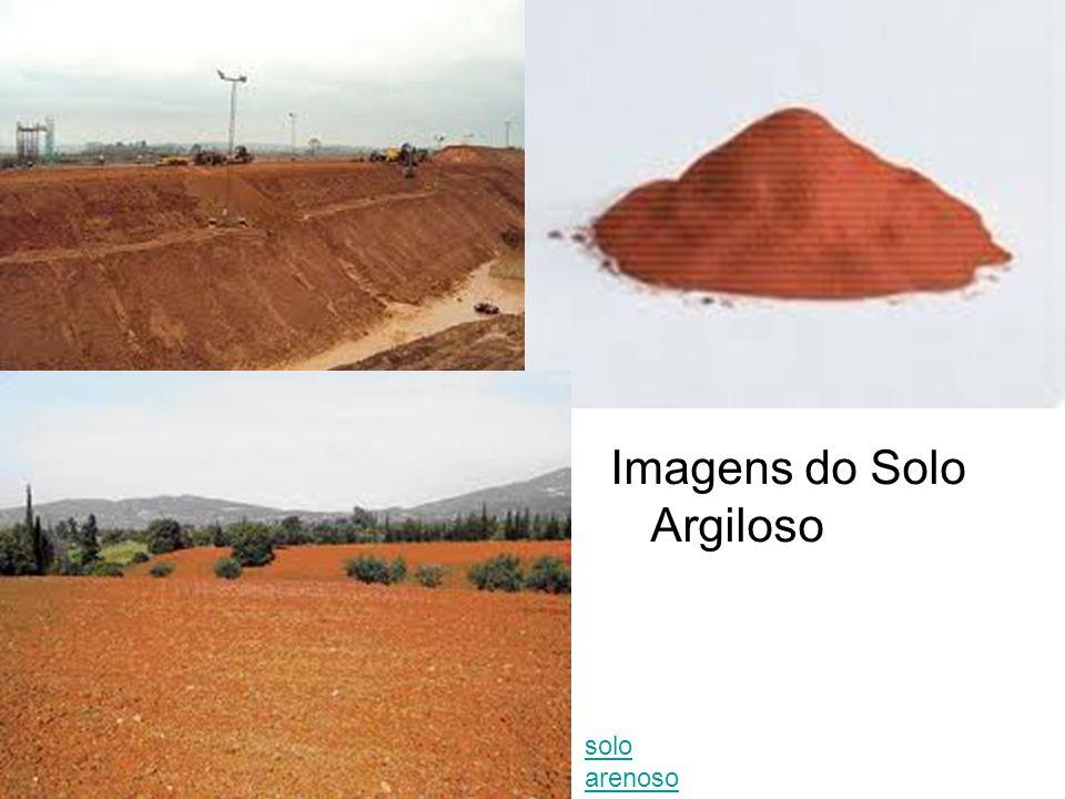 Imagens do Solo Argiloso