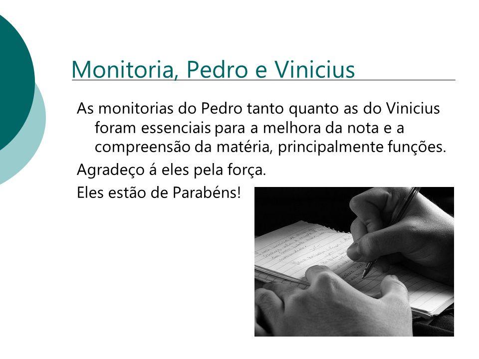 Monitoria, Pedro e Vinicius