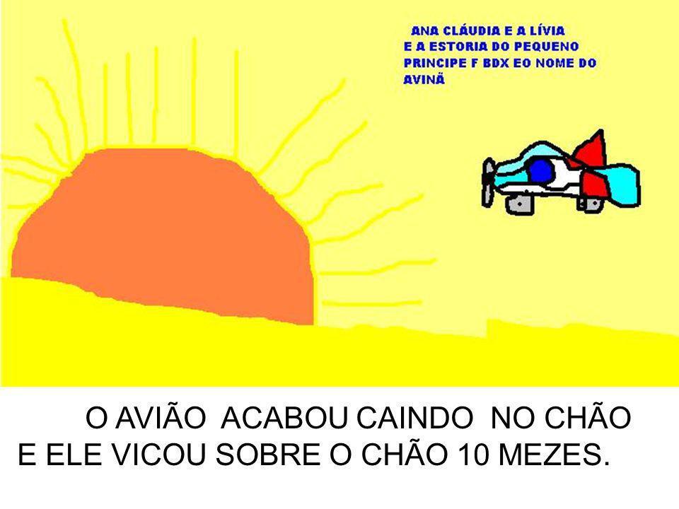 O AVIÃO ACABOU CAINDO NO CHÃO