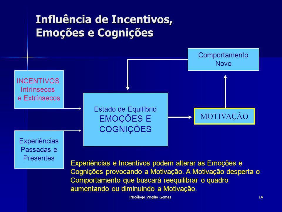 Influência de Incentivos, Emoções e Cognições