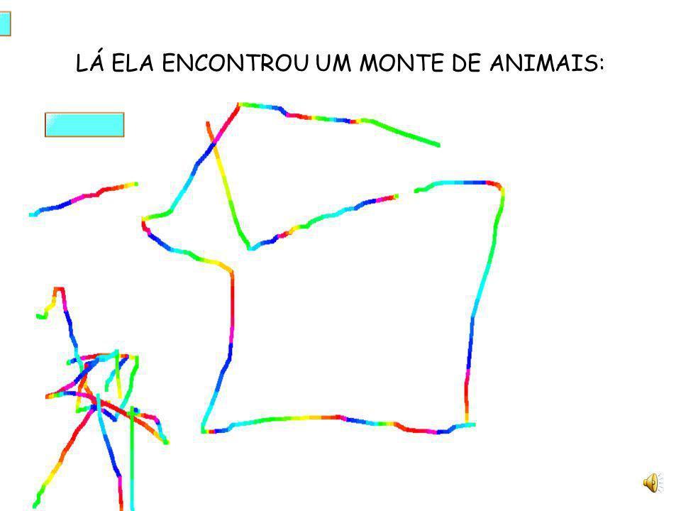 LÁ ELA ENCONTROU UM MONTE DE ANIMAIS: