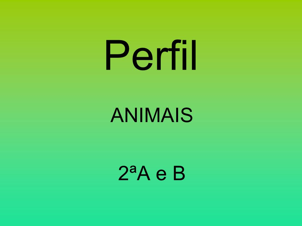 Perfil ANIMAIS 2ªA e B