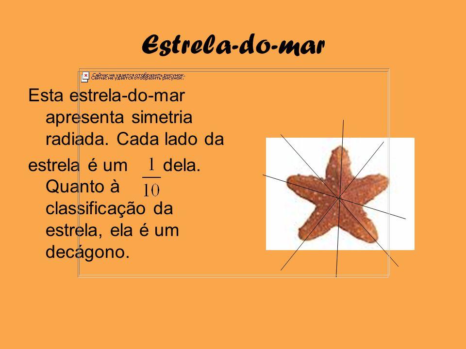 Estrela-do-mar Esta estrela-do-mar apresenta simetria radiada. Cada lado da.