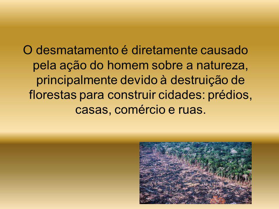 O desmatamento é diretamente causado pela ação do homem sobre a natureza, principalmente devido à destruição de florestas para construir cidades: prédios, casas, comércio e ruas.