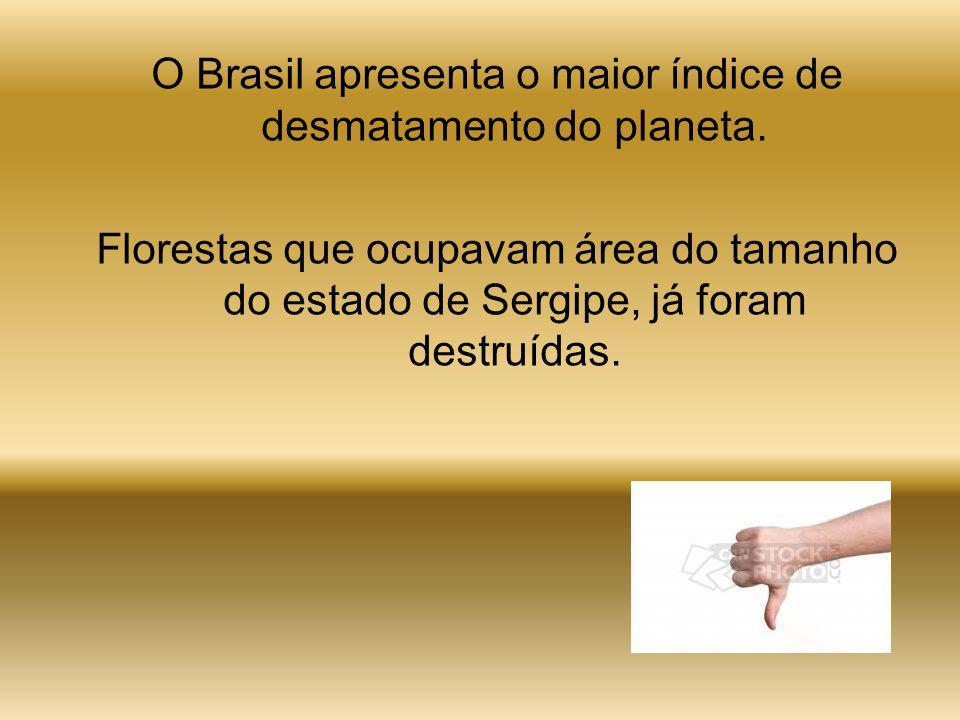 O Brasil apresenta o maior índice de desmatamento do planeta.