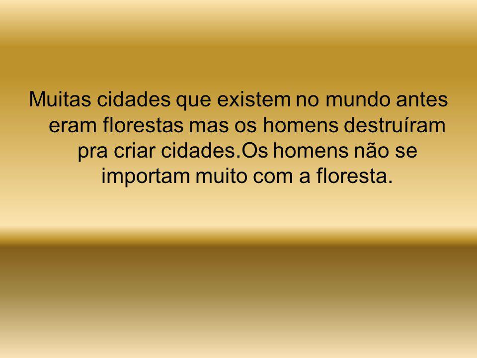 Muitas cidades que existem no mundo antes eram florestas mas os homens destruíram pra criar cidades.Os homens não se importam muito com a floresta.