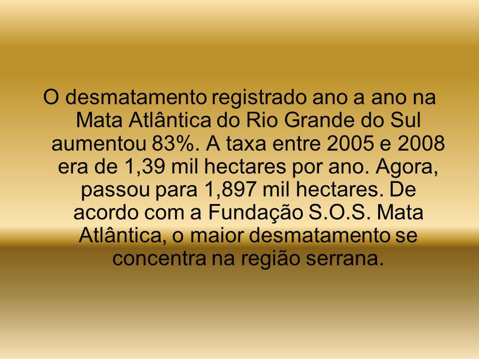 O desmatamento registrado ano a ano na Mata Atlântica do Rio Grande do Sul aumentou 83%.