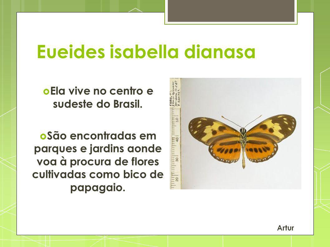 Ela vive no centro e sudeste do Brasil.