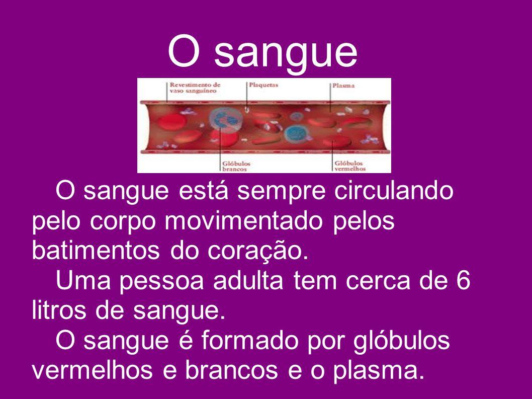 O sangue O sangue está sempre circulando pelo corpo movimentado pelos batimentos do coração. Uma pessoa adulta tem cerca de 6 litros de sangue.