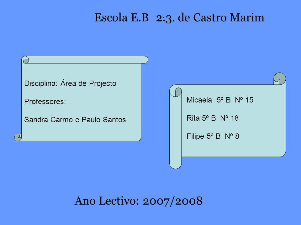 Escola E.B 2.3. de Castro Marim Ano Lectivo: 2007/2008 .