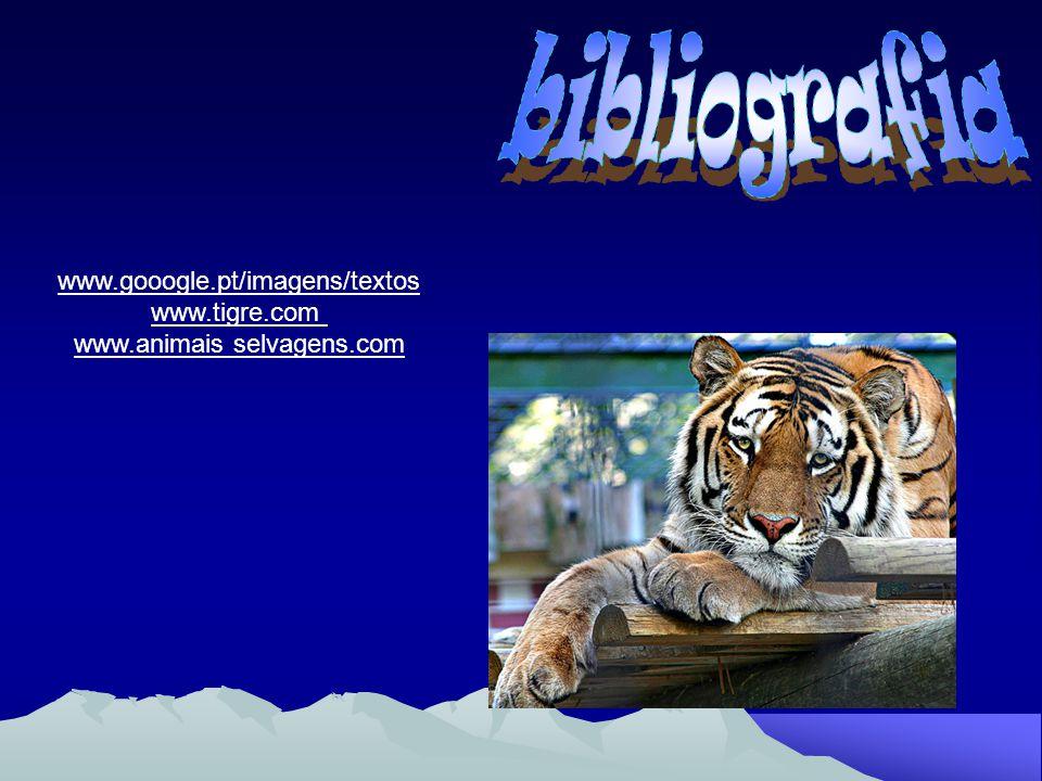 www.animais selvagens.com
