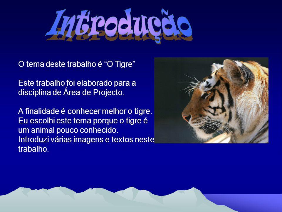 Introdução O tema deste trabalho é O Tigre