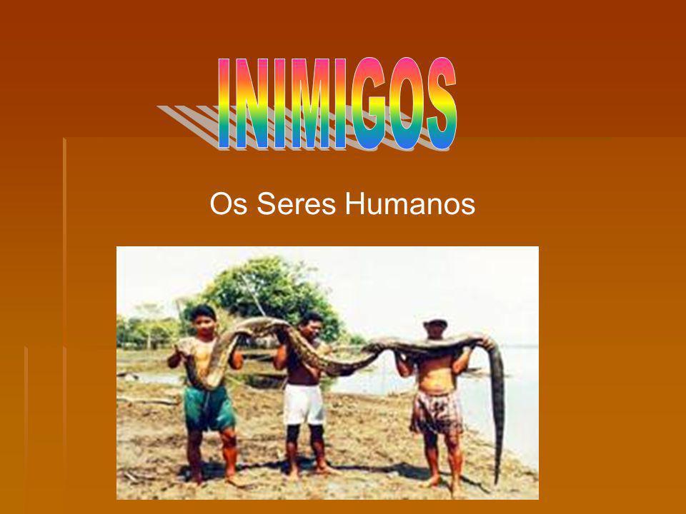INIMIGOS Os Seres Humanos