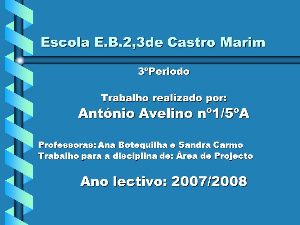Escola E.B.2,3de Castro Marim