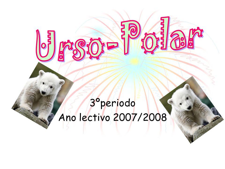 Urso-Polar 3ºperiodo Ano lectivo 2007/2008